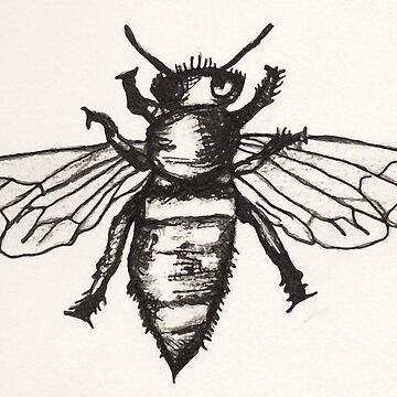 Bee by catherine-art