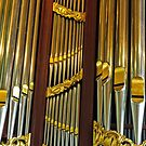 organ pipes- Amsterdam by David Chesluk