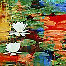 Lily Pad Ecstasy  by Gail Jones