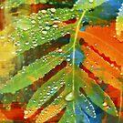 Luscious Fern Fantasy by Gail Jones