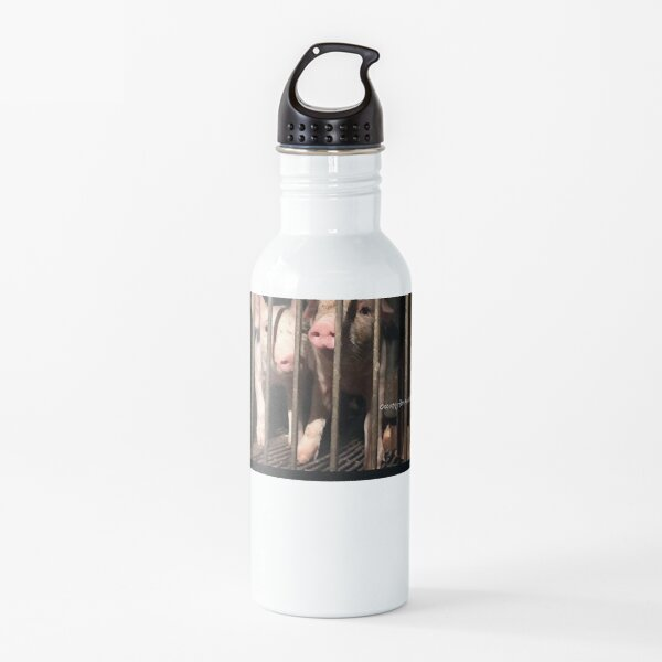 Speciesism - Pigs in a Cage Water Bottle