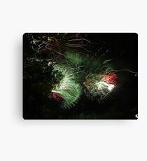 Wild Fireworks 4th of July Esplanade Canvas Print
