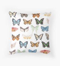 Butterflies & Moths Throw Pillow