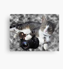 """(CAT) """"SAY CHEESE"""" (MOUSE)""""DID SOMEONE SAY CHEESE?"""" CAT & MOUSE PHOTOGRAPHER - PICTURE & CARD Metal Print"""