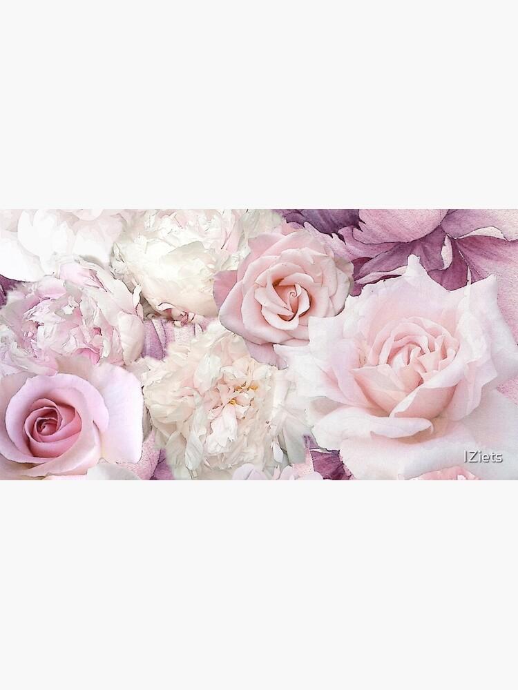 Big Soft Pink Roses Summertime Botanical Garden Flowers  by IZiets