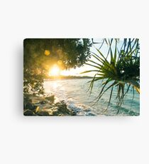 Last of the Days Rays Canvas Print