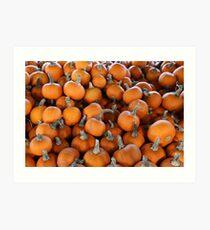 Pumpkins 8 Art Print