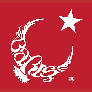 "Baris (""Peace"" in Turkish) by latindesigner"