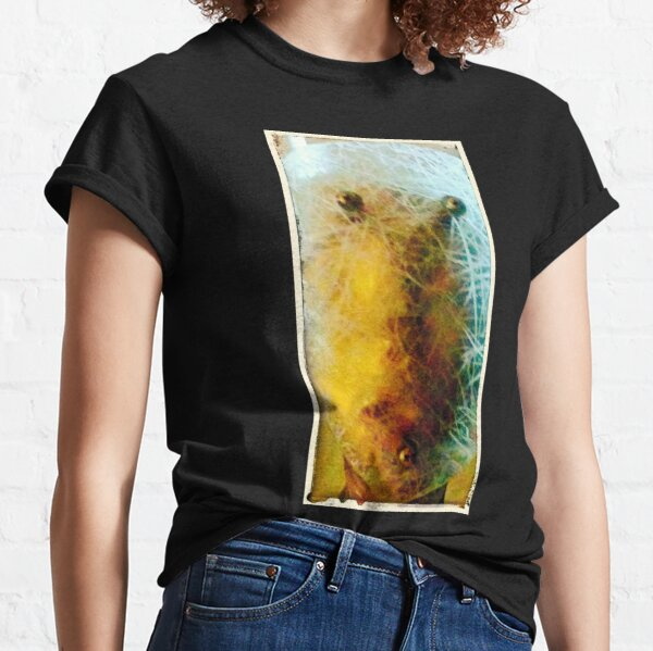 The Cracked Face Classic T-Shirt