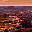 Canyonlands Sunset by Radek Hofman