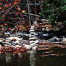 Finding Balance by Terri~Lynn Bealle