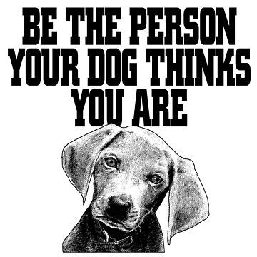 Be the person your dog thinks you are by bharadwajreddy