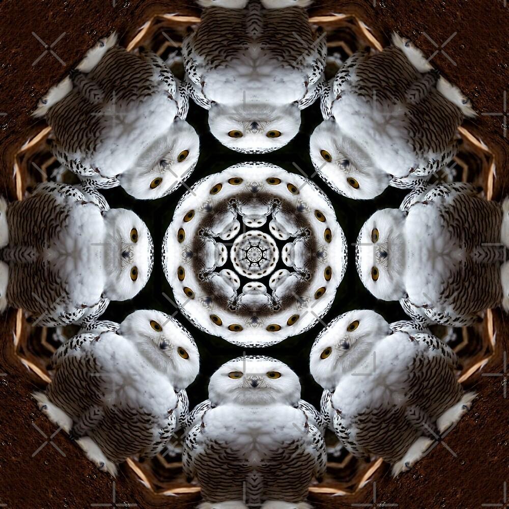 Owliescope by Yampimon