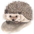 Hedgehog by Michelle Collier
