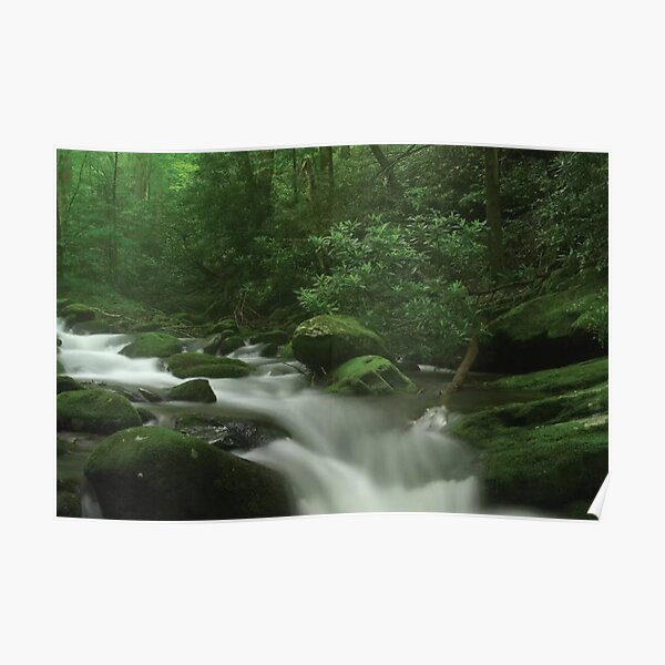 Roaring Fork River Flowing Through The Great Smoky Mountains National Park Poster