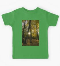 Sun Spotting Autumn - a Peaceful Forest in the Fall Kids Clothes