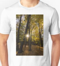 Sun Spotting Autumn - a Peaceful Forest in the Fall T-Shirt