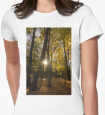 Sun Spotting Autumn - a Peaceful Forest in the Fall Womens Fitted T-Shirt