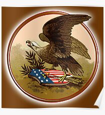 WAR, Eagle, Vintage, AMERICAN, Antique, Flag, USA, Shield, Symbol,  Historic, Old, America, American Poster