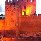 Cahir Castle Ireland by DES PALMER