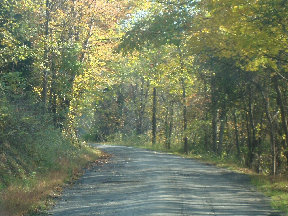 Country Road Autumn by Erin Kelley