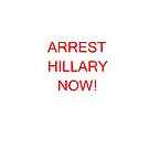 ARREST HILLARY NOW! by TIMOTHY  POLICH