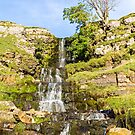 Cow Close Waterfall by David Lewins