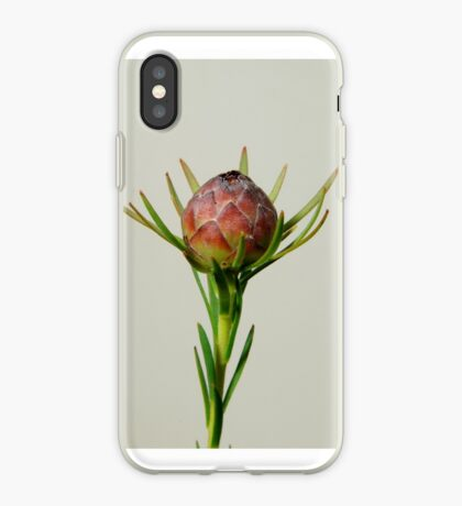 Poised to Bloom iPhone Case