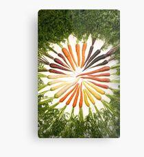 Carrot Color Wheel  Metal Print
