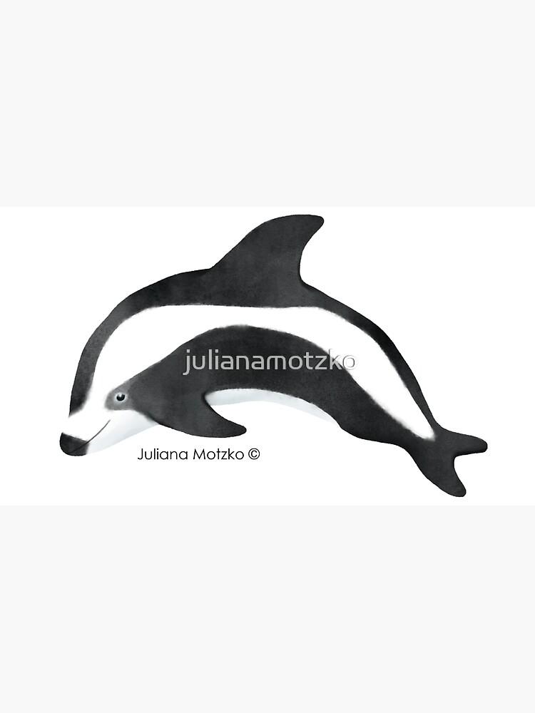 Hourglass Dolphin by julianamotzko