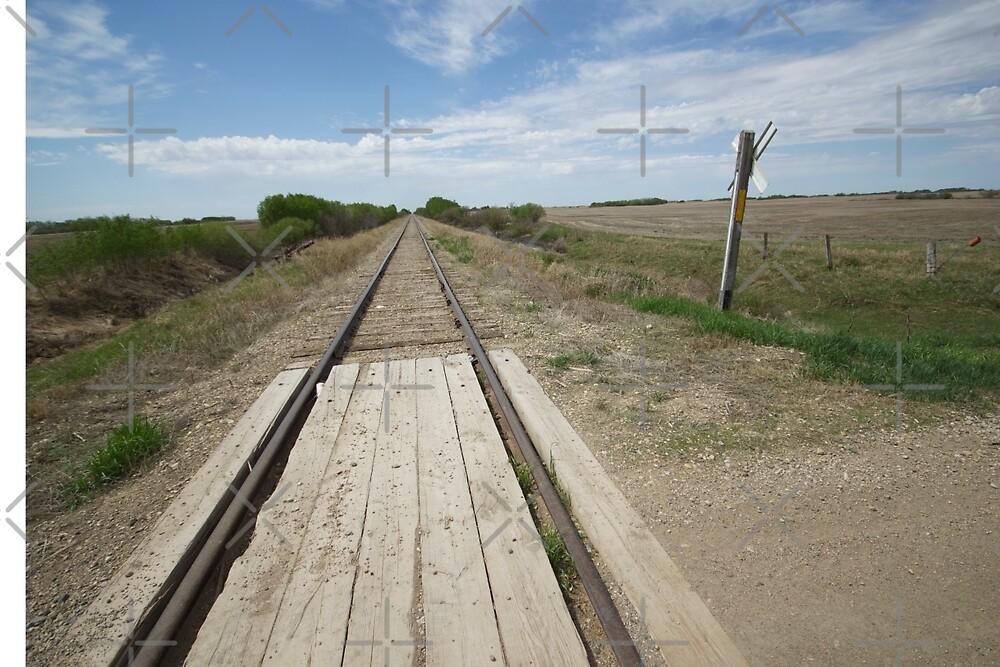 Rail Crossing 2 by Raquel Fletcher