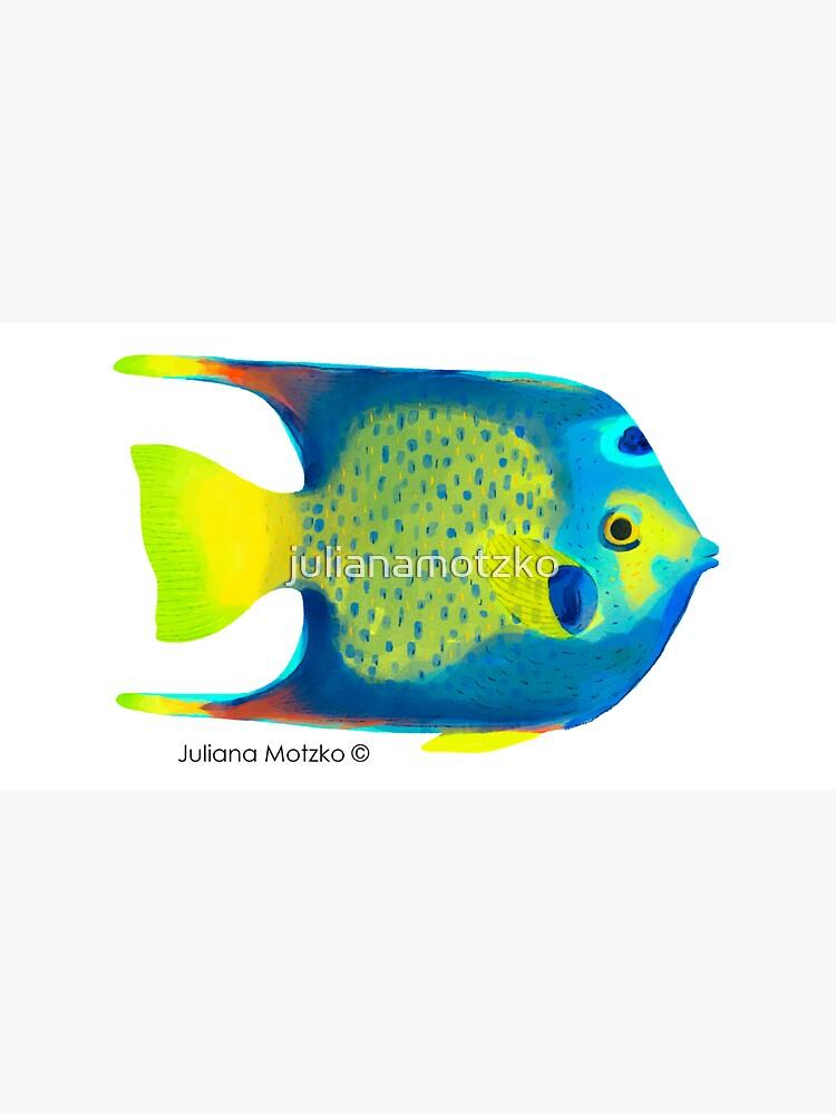 Angelfish by julianamotzko