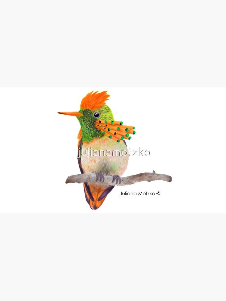 Tufted Coquette Hummingbird by julianamotzko