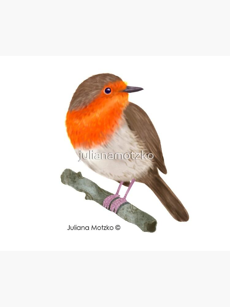 Robin Redbreast bird by julianamotzko