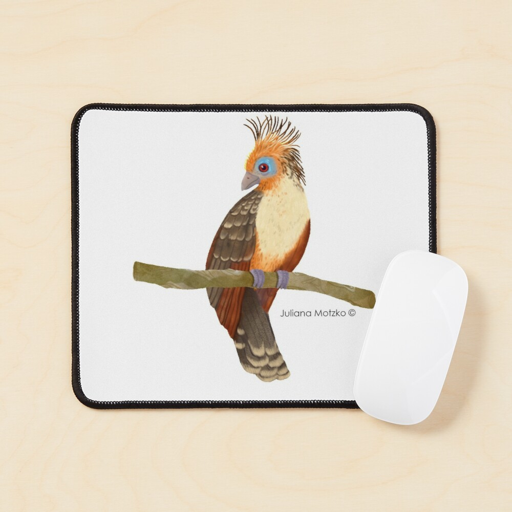 Hoatzin Bird Mouse Pad