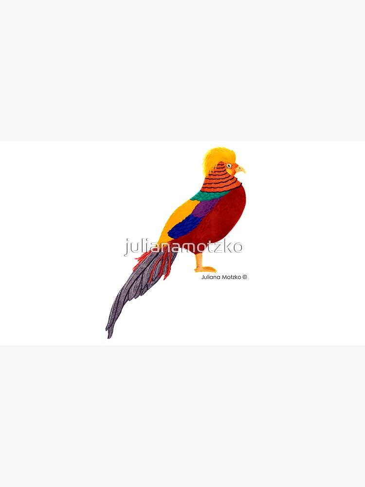 Golden Pheasant by julianamotzko