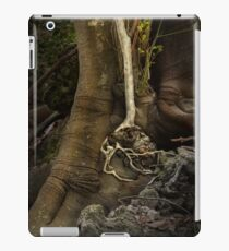 Valley of Shadows, Australia iPad Case/Skin