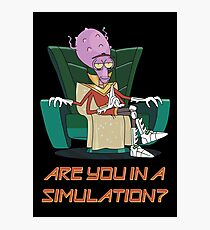 Rick and Morty – Are You in a Simulation? Photographic Print