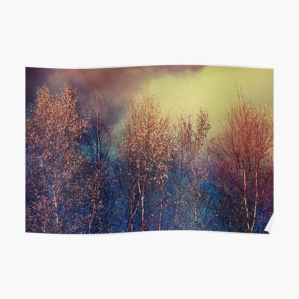 Natures Changing Moods Poster