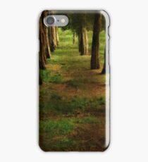 Sunrise Allée iPhone Case/Skin