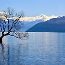 Lake Wanaka by Hannah Welbourn