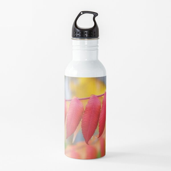 Red Leaves Of A Virginia Sumac Water Bottle
