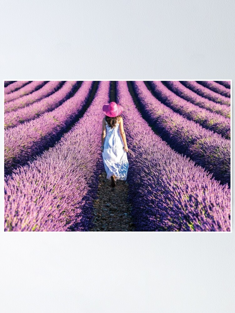 Alternate view of Woman Walking In The Lavender Poster