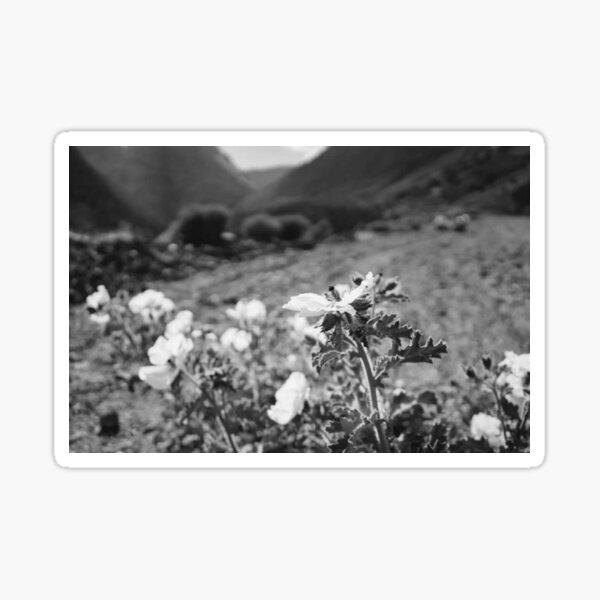 Monochrome Yosemite-Blüten Sticker