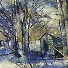 Outhouse in Snow by Claire Bull