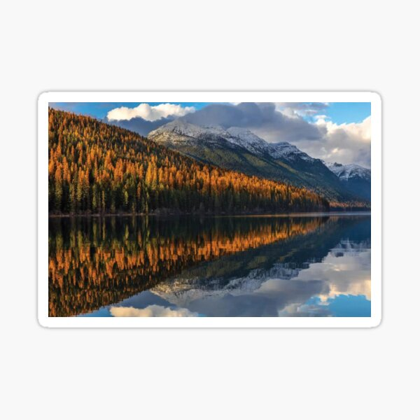 Mountain Peaks Reflect Into Bowman Lake In Autumn Glacier National Park Sticker