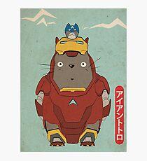 My Neighbour Iron Totoro Photographic Print