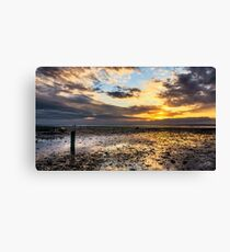 Oyster Faming Canvas Print
