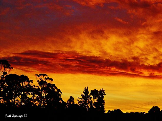 Night Sky at Somerset by Judi Rustage