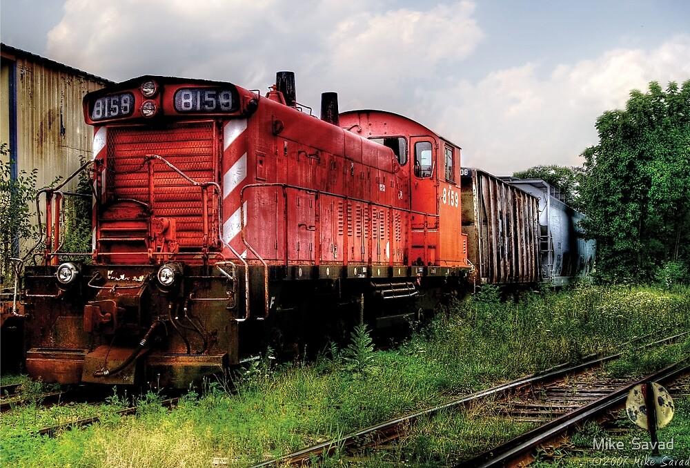 Train 8159 by Michael Savad